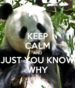 Poster: KEEP CALM AND JUST YOU KNOW WHY