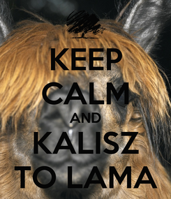 Poster: KEEP CALM AND KALISZ TO LAMA