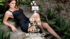 Poster: KEEP CALM AND KEEP WANKING