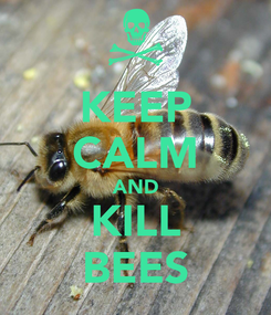 Poster: KEEP CALM AND KILL BEES