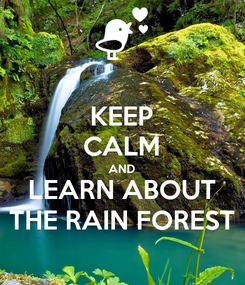 Poster: KEEP CALM AND LEARN ABOUT THE RAIN FOREST