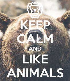 Poster: KEEP CALM AND LIKE ANIMALS