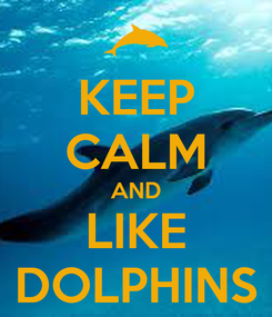 Poster: KEEP CALM AND LIKE DOLPHINS