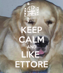 Poster: KEEP CALM AND LIKE  ETTORE
