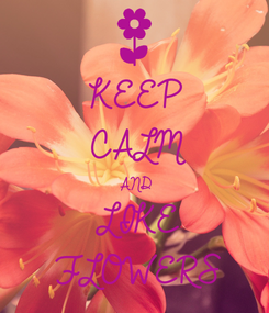 Poster: KEEP CALM AND LIKE FLOWERS
