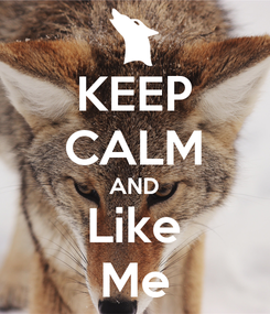 Poster: KEEP CALM AND Like Me