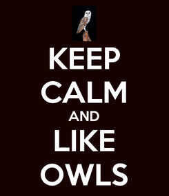 Poster: KEEP CALM AND LIKE OWLS