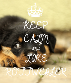 Poster: KEEP CALM AND LIKE ROTTWEILER