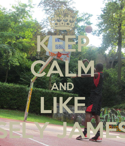 Poster: KEEP CALM AND LIKE SELY JAMES