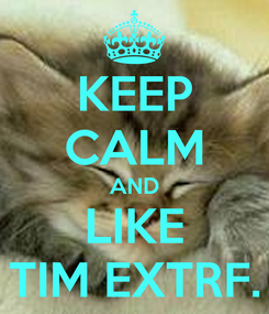 Poster: KEEP CALM AND LIKE TIM EXTRF.