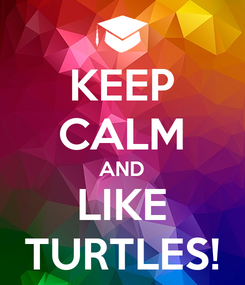 Poster: KEEP CALM AND LIKE TURTLES!