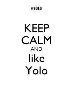 Poster: KEEP CALM AND like Yolo
