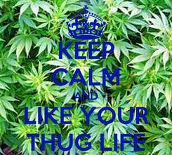 Poster: KEEP CALM AND LIKE YOUR THUG LIFE
