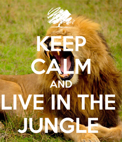 Poster: KEEP CALM AND LIVE IN THE  JUNGLE