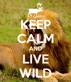 Poster: KEEP CALM AND LIVE WILD