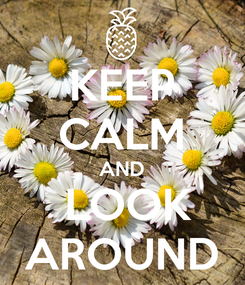 Poster: KEEP CALM AND  LOOK AROUND