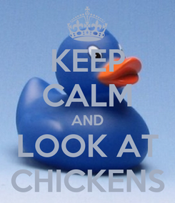 Poster: KEEP CALM AND LOOK AT CHICKENS