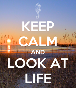 Poster: KEEP CALM AND LOOK AT LIFE