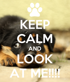 Poster: KEEP CALM AND LOOK AT ME!!!!