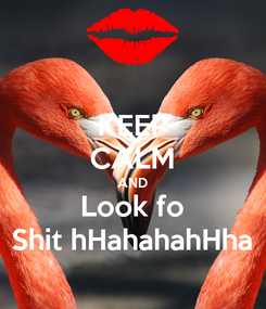 Poster: KEEP CALM AND Look fo Shit hHahahahHha