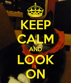 Poster: KEEP CALM AND LOOK ON