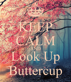 Poster: KEEP CALM AND Look Up Buttercup