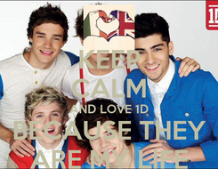 Poster: KEEP CALM AND LOVE 1D BECAUSE THEY ARE MY LIFE
