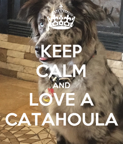 Poster: KEEP CALM AND LOVE A CATAHOULA