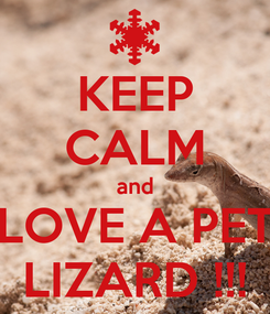 Poster: KEEP CALM and LOVE A PET LIZARD !!!