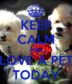 Poster: KEEP CALM AND LOVE A PET TODAY