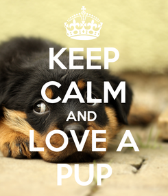 Poster: KEEP CALM AND  LOVE A PUP