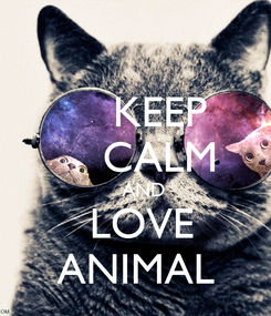 Poster:     KEEP     CALM     AND    LOVE  ANIMAL