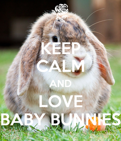 Poster: KEEP CALM AND LOVE BABY BUNNIES