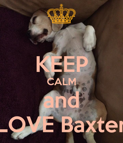 Poster:  KEEP CALM and LOVE Baxter