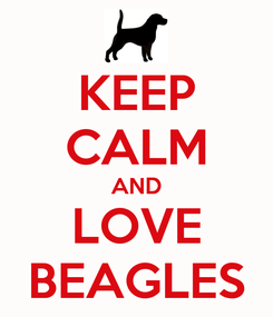 Poster: KEEP CALM AND LOVE BEAGLES