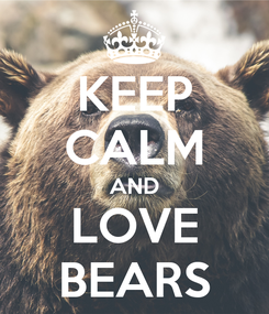 Poster: KEEP CALM AND LOVE BEARS