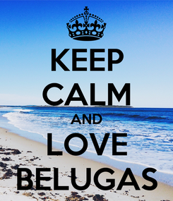 Poster: KEEP CALM AND LOVE BELUGAS