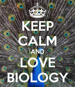 Poster: KEEP CALM AND LOVE BIOLOGY