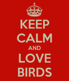 Poster: KEEP CALM AND LOVE BIRDS