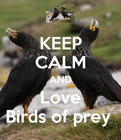 Poster: KEEP CALM AND Love Birds of prey