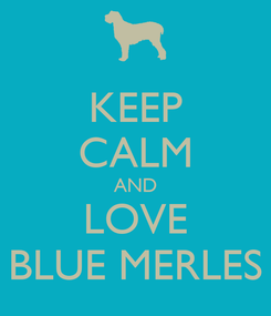 Poster: KEEP CALM AND LOVE BLUE MERLES
