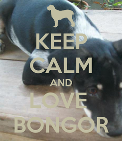 Poster: KEEP CALM AND LOVE  BONGOR