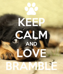 Poster: KEEP CALM AND LOVE BRAMBLE
