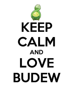 Poster: KEEP CALM AND LOVE BUDEW
