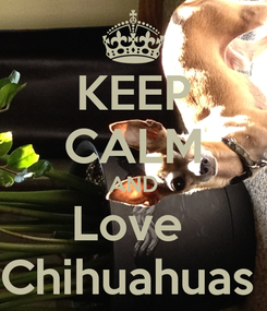 Poster: KEEP CALM AND Love  Chihuahuas