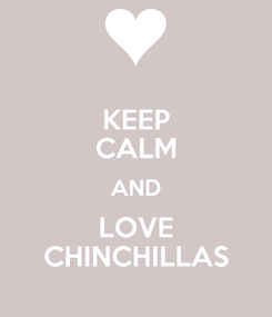 Poster: KEEP CALM AND LOVE CHINCHILLAS