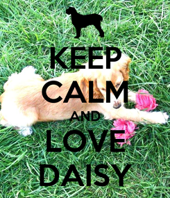 Poster: KEEP CALM AND LOVE DAISY