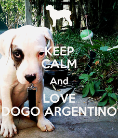 Poster: KEEP CALM And LOVE DOGO ARGENTINO