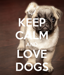 Poster: KEEP CALM AND LOVE DOGS