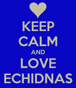 Poster: KEEP CALM AND LOVE ECHIDNAS